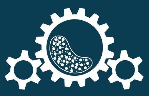 Logo Institut für Aufbereitungsmaschinen (IAM) der TU Bergakademie Freiberg Aufbereitungstechnik Maschinenbau Prof. Holger Lieberwirth