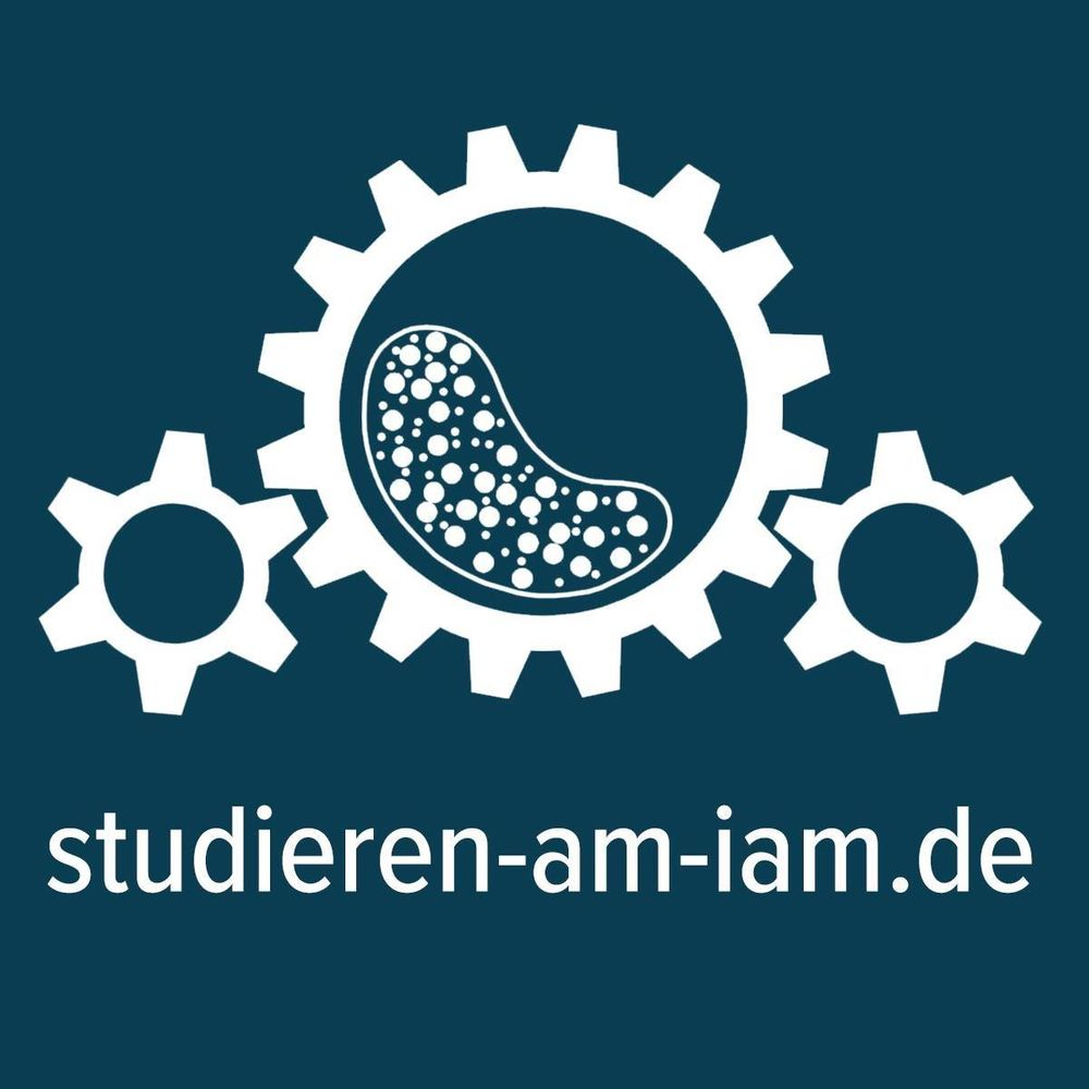 Logo Institute of Mineral Processing Machines IAM of the TU Mining Academy Freiberg Prof. Holger Lieberwirth