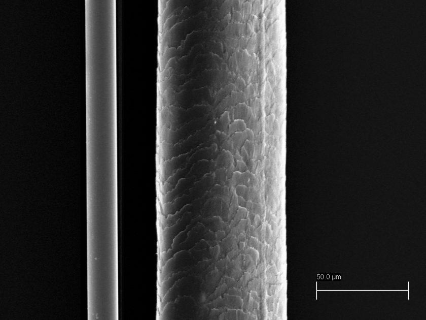 Vergrößerung des Vergleichs zwischen einem menschlichen Haar und dem dünnsten von Haver & Boecker verwendeten Stahldraht
