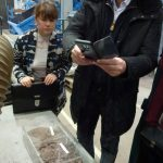 Ein Kolloquiumsteilnehmer fotografiert mit seinem Smartphone 3 ausgestellte Erzproben im Technikum des IAM