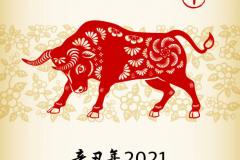 """""""2021 - Jahr des Büffels""""  auf Chinesisch und auf Englisch"""
