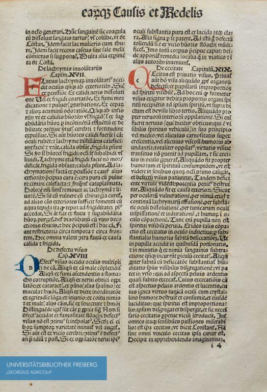 Seitenausschnitt aus Plinii Secvndi natvrae historiarvm libri. XXXVII. 1497