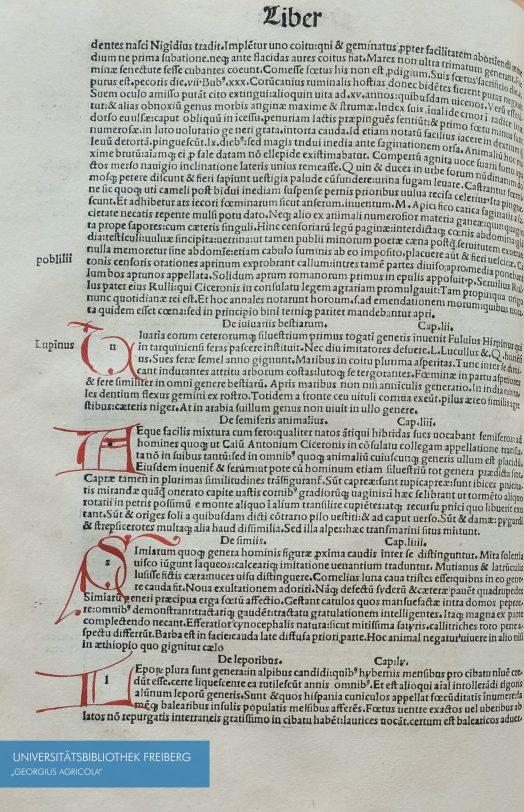 Seitenausschnitt von Plinii Secundi naturae historiarum libri. XXXVII. 1499
